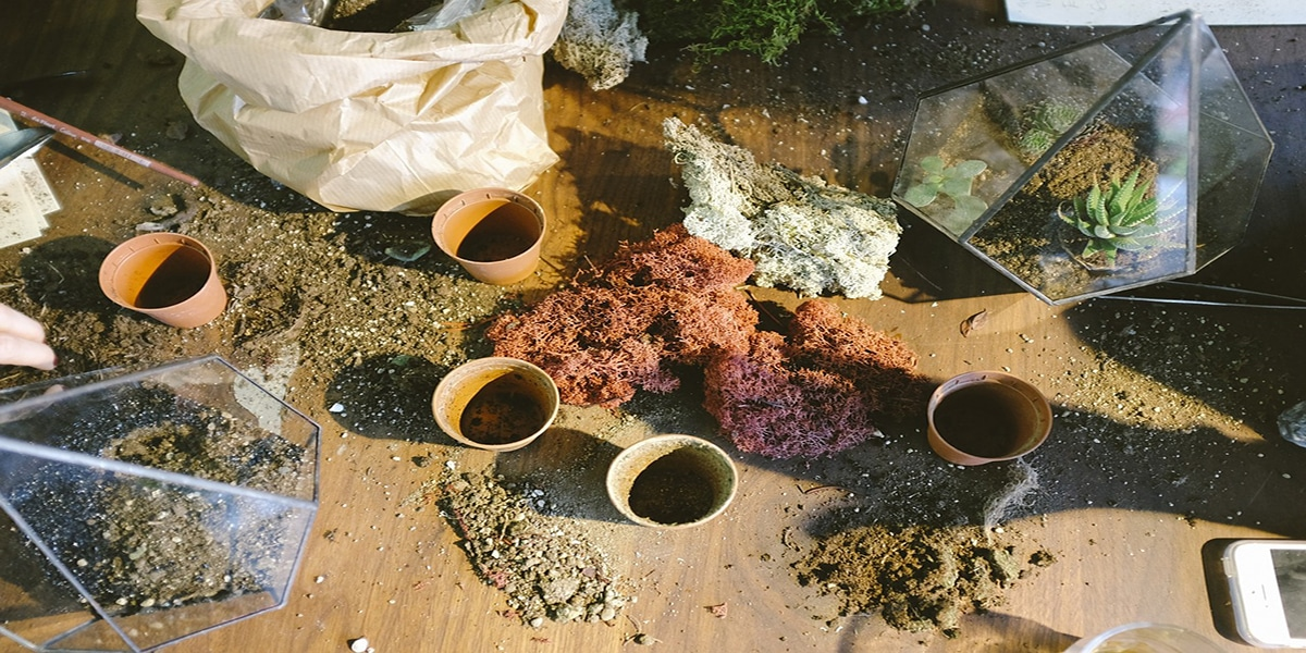 How To Make Potting Mix