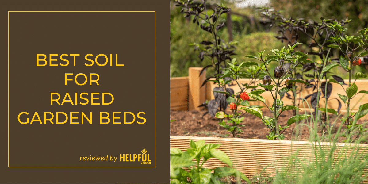 5 Of The Best Soil For Raised Garden Beds Reviewed By Helpful Garden